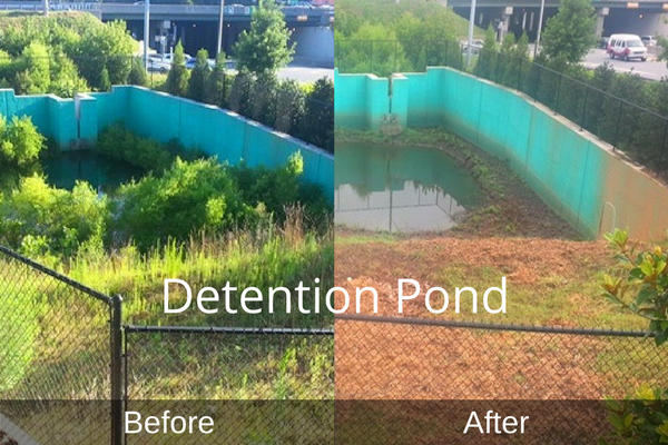 Cleared Detention Pond