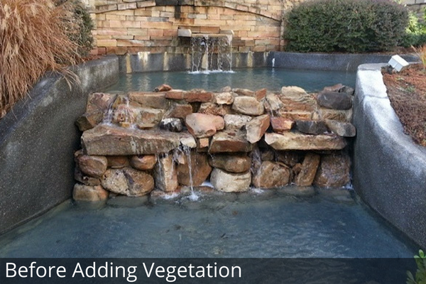Water Feature Before Adding Vegetation
