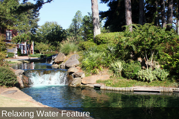 Relaxing Clean Water Feature