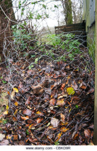 Autumn Composting