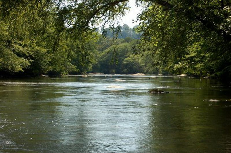 What in the hell aquascape enviromental for Toccoa river fishing