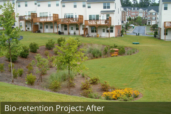 Bio-retention Project after