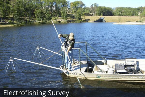 Fisheries Services | Aquascape Enviromental