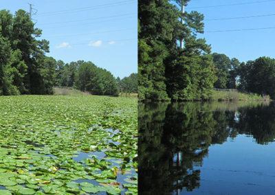 Lake Management | Aquascape Enviromental
